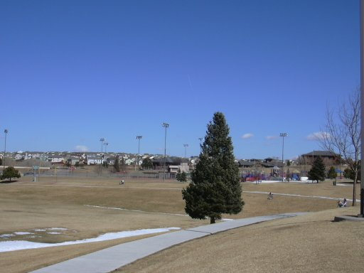 Colorado Springs- Cottonwood Park