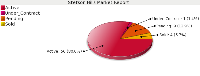 Colorado Springs Real Estate - Market Report - Stetson Hills Subdivision - December 2008