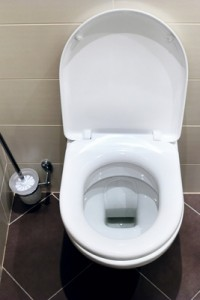Interior of a typical water-closet with brush.